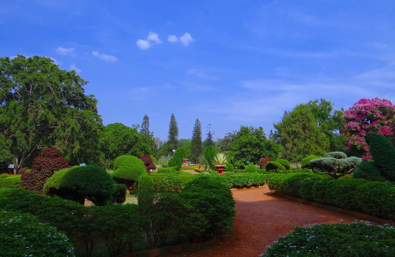 botanical-garden-332536_1280