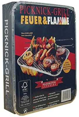 Feuer-Flamme-Picknick-Grill-1St-0