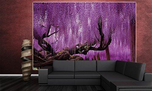 Wisteria-Fototapete-Blauregen-Schmetterlingsbltler-Wandbild-XXL-Poster-Wisteria-Wisterien-Wanddeko-Blumen-210-x-140-cm-0-4