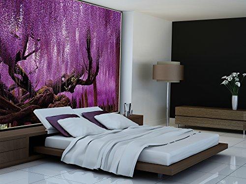 Wisteria-Fototapete-Blauregen-Schmetterlingsbltler-Wandbild-XXL-Poster-Wisteria-Wisterien-Wanddeko-Blumen-210-x-140-cm-0-6